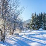 Winterspaß am Wimmergreuth